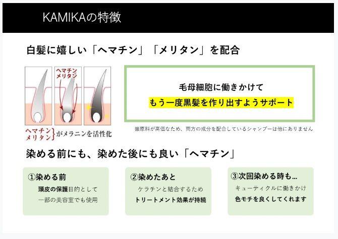 カミカ(KAMIKA)シャンプーの白髪への効果を支える成分