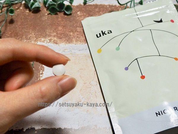 uka(ウーカ)雛形あきこ愛用サプリの効果を口コミ
